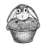 Lapin noir et blanc tenant le panier avant de pattes illustration de vecteur