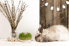 Lapin, oeufs de pâques, branche de saule, herbe, guirlande d'oeufs de pâques Photographie stock