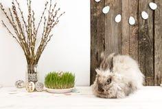 Lapin, oeufs de pâques, branche de saule, herbe, guirlande d'oeufs de pâques Photos stock