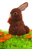 lapin Pâques Photos libres de droits