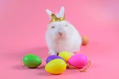 Lapin pelucheux blanc se reposant sur le fond rose propre et l'oeuf coloré, petit lapin blanc Photographie stock libre de droits