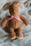 Lapin pelucheux de jouet Carte postale au jour du ` s de Valentine Photo libre de droits