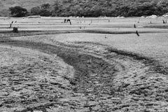 Lapinha blanco y negro DA Serra Landscape foto de archivo