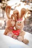 Lapins dans l'amour avec un coeur Photographie stock