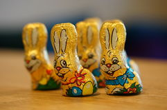 Lapins de chocolat de Pâques photo libre de droits