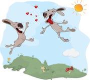 Lapins et amour Photographie stock