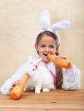 Lapins mangeant de grandes carottes Photos stock