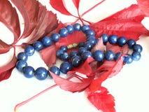 Lapis lazuli Royalty Free Stock Image