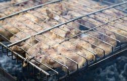 Lapje vlees op de brand wordt geroosterd die Royalty-vrije Stock Fotografie