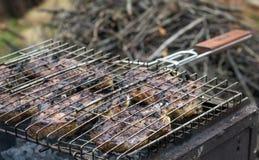 Lapje vlees op een brand in openlucht wordt gekookt die Royalty-vrije Stock Afbeeldingen