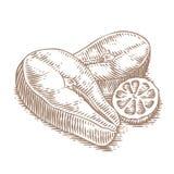 Lapje vlees twee van zalm met citroen Royalty-vrije Stock Afbeelding