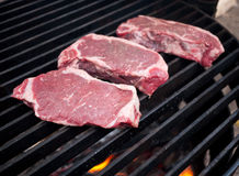 Lapjes vlees Royalty-vrije Stock Afbeelding