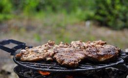 Lapjes vlees bij de grill Stock Foto's