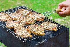 Lapjes vlees in de grill van de Barbecue Stock Foto