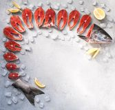 Lapjes vlees, verse rode vissen op grijze achtergrond met ijs en citroenwiggen stock foto