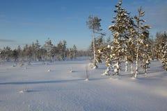 Lapland (Ροβανιέμι), Φινλανδία Στοκ Εικόνα
