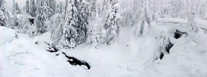 Lapland Fotografia de Stock Royalty Free