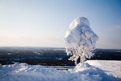 Lapland Finland Royalty Free Stock Images