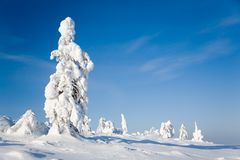 Lapland Finland Royalty Free Stock Image