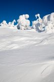 Lapland Finland. Beautiful winter landscpe with snow in Lapland Finland royalty free stock photo