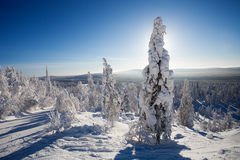Lapland Finland Royalty Free Stock Photography