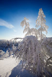 Lapland Finland Stock Photography