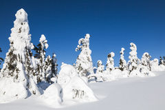 Lapland, Finland Royalty Free Stock Photo