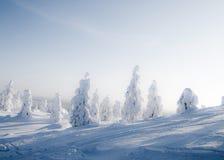 Lapland Finlandia fotografia royalty free