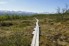 Lapland landscape and hiking path. Lapland landscape: hiking path in Malla Strict Nature Reserve in Kilpisjarvi, Lapland, Finland, Europe Stock Images