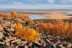 Lapland landscape with rocky mountain and colorful trees in autumn. View from the top of a rocky mountain over Lapland landscape in autumn Stock Photo
