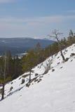Lapland natur Royaltyfri Fotografi