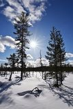 Lapland nature Stock Image