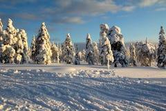 Lapland (Rovaniemi), Finlandia Foto de Stock Royalty Free
