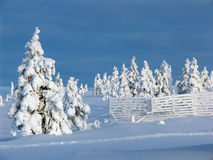 Lapland Stock Photography