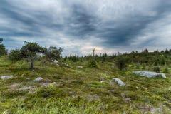 Lapland vildmark Royaltyfri Fotografi