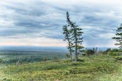 Lapland vildmark Arkivbild