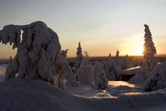 Lapland winter wonderland Royalty Free Stock Photos