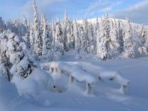 Laponia Imagen de archivo