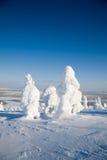 Laponia Finlandia Imagen de archivo libre de regalías