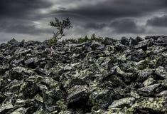 Laponia, Finlandia septentrional Imágenes de archivo libres de regalías
