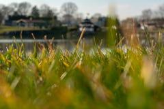 Lapp av gräs i förgrunden, med en gazebo och ett litet damm i bakgrunden, Lancaster County, PA royaltyfri bild