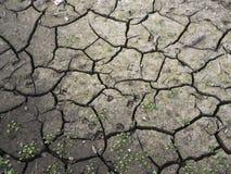 Lapp av torkad jord p? grund av torka royaltyfri bild