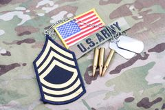 Lapp för fanjunkare för USA-ARMÉ frodig, flaggalapp, med hundetiketten och 5 56 mmrundor på likformign Royaltyfria Foton