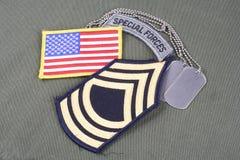 Lapp för fanjunkare för USA-ARMÉ frodig, luftburen flik, flaggalapp och hundetikett på likformign för olivgrön gräsplan Royaltyfri Foto