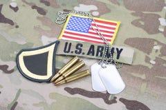 Lapp för privat första klass för USA-ARMÉ frodig, flaggalapp, med hundetiketten med 5 56 mmrundor på camoufl Royaltyfri Bild