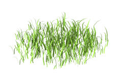 lapp för tolkning 3D av gräs på vit Arkivbild
