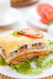 Lappa av grönsaklasagna med ost Royaltyfri Bild