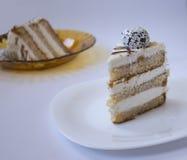 Lappa av tårtan Fotografering för Bildbyråer