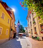 Lappad gammal gata och kyrka av Ljubljana den vertikala sikten Royaltyfri Foto
