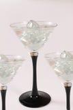 Lappar av is i ett exponeringsglas Royaltyfri Bild